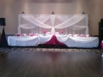 White Organza Backdrop